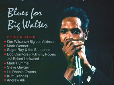Blues For Big Walter  Various Artists