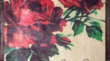 scarlett-roses
